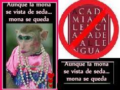 http://www.teresafreedom.com//images/articles/biteca/6.MONA.CAT2.JPG